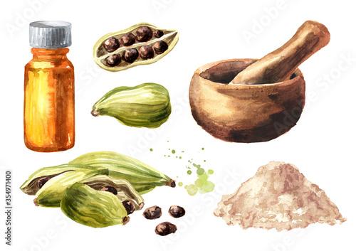 Obraz na plátně Cardamon pods, powder, mortar and bottle of essential oil set