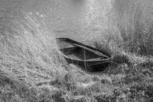 Small Barge, Surrounded By Reeds