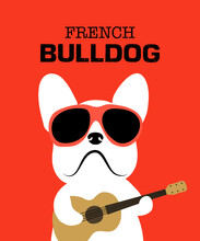 French Bulldog Wearing Red Sun...