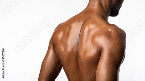 Fotografía Unrecognizable Black Bodybuilder Posing Back To Camera In Studio, Panorama