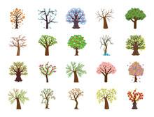 Set Of Four Season Tree Flat V...