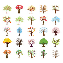 Four Season Tree Flat Vector Icons Set