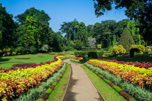 Royal Botanic Gardens, Peraden...