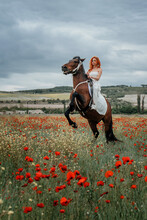 A Girl With Red Hair And A White Dress Is Sitting On A Horse In A Field Of Poppies. The Horse Stands On Its Hind Legs Making A Candle.