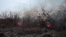 Fire And Smoke, Dry Grass Is B...