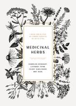 Vintage Medicinal Herbs Card O...