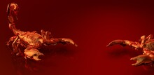 Red Metal Scorpions On Reflect...