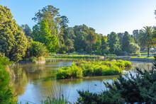 Artificial Pond Royal Botanic Garden In Melbourne, Australia