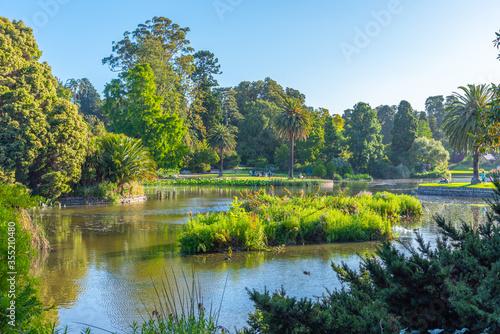 Cuadros en Lienzo Artificial pond Royal botanic garden in Melbourne, Australia