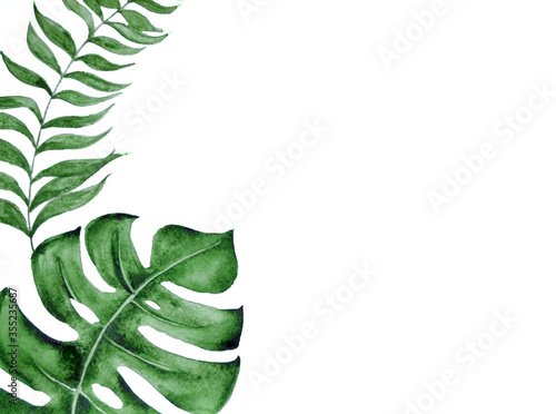 Leinwand Poster Watercolor tropical green leaves on white background.