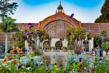 The Lily Pond At Balboa Park, ...