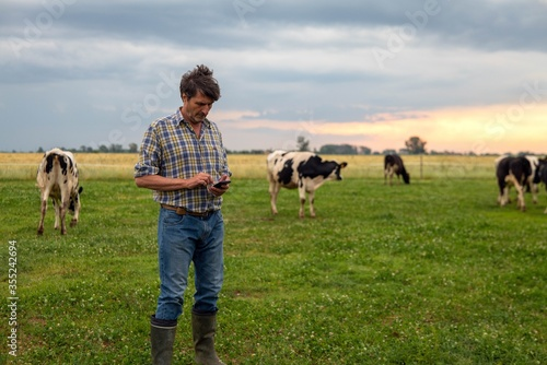 Fotografía A mature male shepherd is using a smart phone for send messages and make calls while gathering cows used for biological milk products industry on a green pasture lawn of a countryside farm