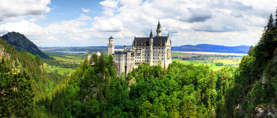 Neuschwanstein castle - Germany - Europe