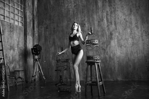 Perfect young woman in sexy black lingerie standing between cages in loft studio room Wallpaper Mural