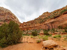 Beautiful Landscape Along The Cassidy Arch Trail Of Capitol Reef National Park