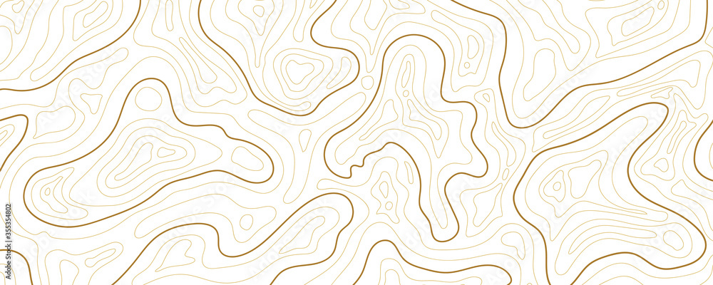 Fototapeta Abstract topographic map background Vector. 21:9 wallpaper design for fabric , packaging , web, geographic grid map vector illustration.