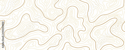 Fotografie, Obraz Abstract topographic map background Vector