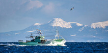 Fishing Boat Returns After Fis...