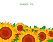 Illustration Of A Sunflower Fi...