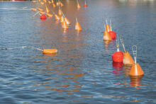 Red Buoys On The Pier