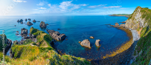 Fototapeta The nuggets - rocky islets at Nugget point in New Zealand obraz