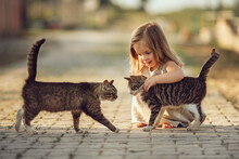 A Little Barefooted Girl In A Gray Linen Dress Is Stroking A Cat. Sunny Summer Evening In The Village. Countryside Background. Image With Selective Focus, Toning And Noise Effects. Two Cats And A Girl