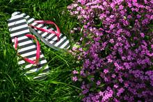 Flip Flops On The Green Grass...