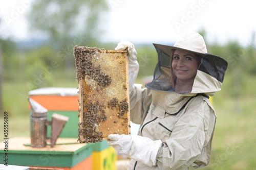 Beekeeper working collect honey. Beekeeping concept. Fototapete