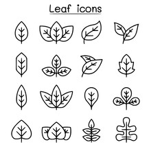 Leaf Icon Set In Thin Line Sty...