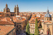 Panoramic view of city from the rooftop of Salamanca Cathedral, Castile and Leon, Spain.