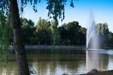 Fototapeta Tęcza - fontanna niebo drzewa światło widok woda