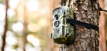Camera Trap Or Spy Photo Camera In Forest.