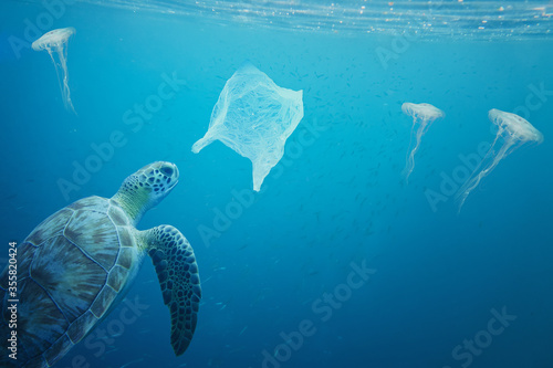 You can see the difference between a jelly fish and a plastic bag floating around under the sea, but a turtle cannot see the difference Wallpaper Mural