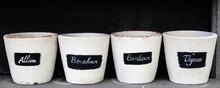 Set Of White Pottery With The ...