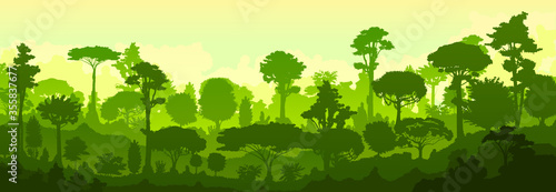 Obraz Forest jungle vector. Silhouette. Landscape, view of the tropical thicket. Trees, shrubs. Predawn morning twilight. Background image. - fototapety do salonu