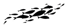 Black Flock Fish. School Of Fi...