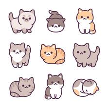 Tiny Baby Kittens Set