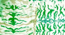 Aquarelle Texture. White Tie Dye Grunge. Floral Dirty Art Grunge. Artistic Dirty Art. Wet Art Print. Watercolor Print. Authentic Brushed Art. Splash Banner.Tie Dye Batik. Green
