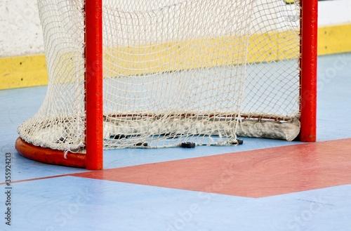 Obraz na plátne Porta da hockey inline con puck, in arena al coperto