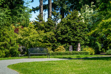 Park Garden Bench In The Sunsh...