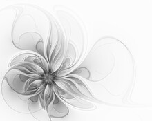 Elegant Gray Fractal Flower On...