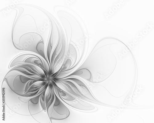 Elegant gray fractal flower on a white background Fototapet