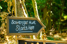 Scavenger Hunt This Way Signpo...
