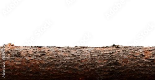 Photographie isolate. pine log