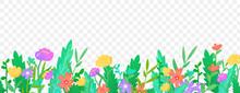 Flowers Herbs Border On Transparent Background.