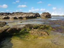Rocky Shore And Water At Beach In Isabela, Puerto Rico