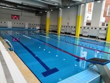 Modern Pool Paths