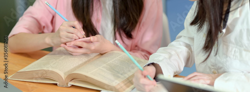 Female college students doing an assignment together with book and stationery Canvas Print