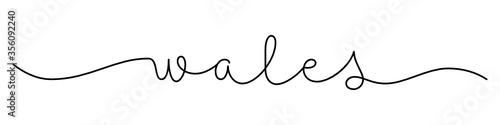 Fototapeta WALES black vector monoline calligraphy banner with swashes obraz