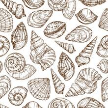Sketch Shells Pattern. Hand Dr...